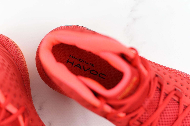 wkładka butów dogry wkosza
